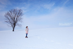albertjou-Winter Snow•北海道