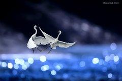 藍色愛琴海 by markl